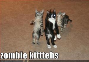 zombie cats-01
